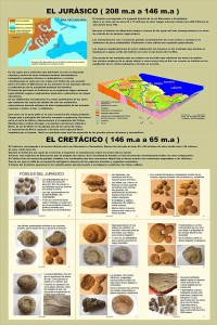 04-panel-jurasico-cretacico[1]